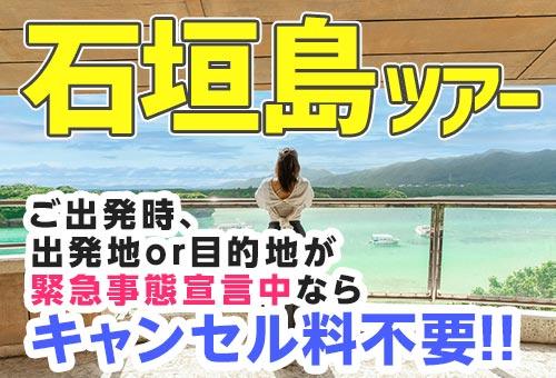 JALで行く!石垣島ツアー