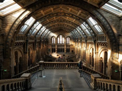 ロンドン:ロンドン自然史博物館