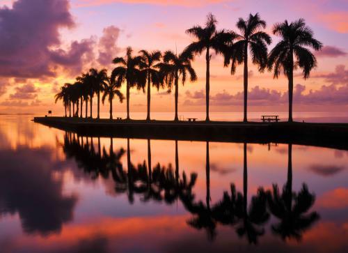 マイアミの美しい夕暮れ