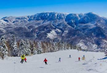 theme_ski