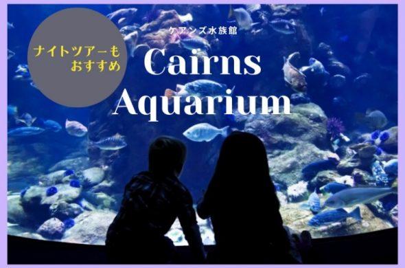 夜のケアンズの海をのぞけちゃう!?ケアンズ水族館のナイトツアーとは?