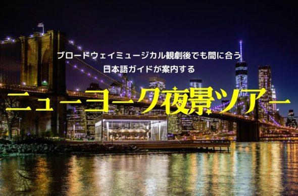 『初めてのニューヨーク観光も安心』ブロードウェイミュージカル観劇後でも間に合う! 日本語ガイドが案内する2大夜景ツアー