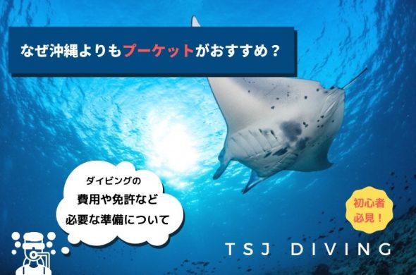【TSJダイビング】なぜ沖縄よりもプーケットがおすすめ?【初心者必見!】気になる費用や免許など必要な準備について