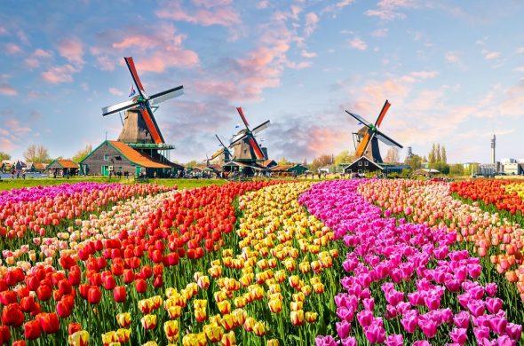 オランダ旅行いつから行ける?コロナ後入国情報と最新激安ツアー【7月11日更新】
