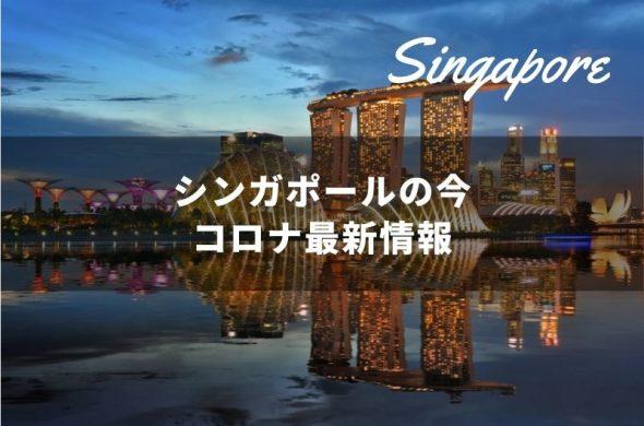 シンガポール 新型コロナウイルス最新情報【11/11更新】