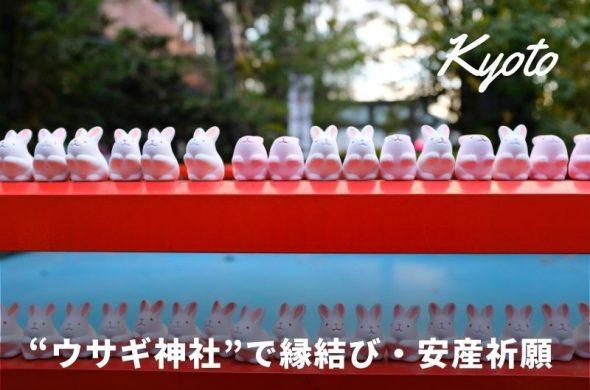 京都でウサギづくしの岡崎神社へ参拝!縁結び・子授け・安産祈願に【二条城からの行き方等】