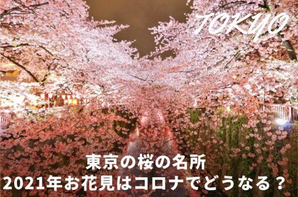 お花見東京2021・人気ランキング常連の桜名所コロナ対策一覧※3月14日最新情報