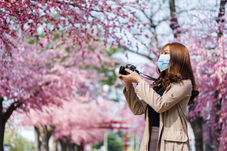 お花見2021 桜名所 コロナ 開花予想