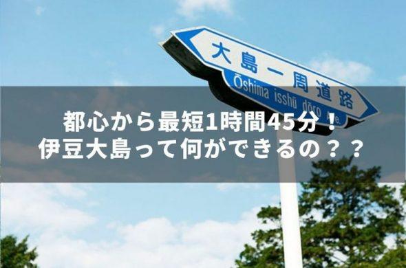 東京から一番近い大自然が満喫できる島 <伊豆大島>って何ができるの??