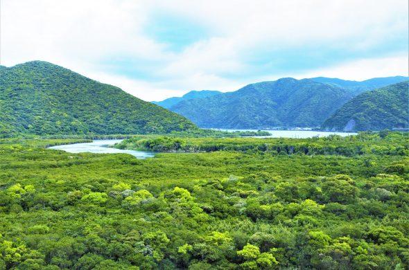 世界遺産2021最新登録!奄美大島、徳之島、沖縄島北部及び西表島とは!