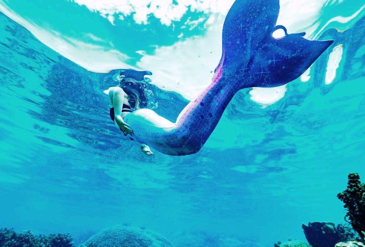 マーメイド 水中 写真