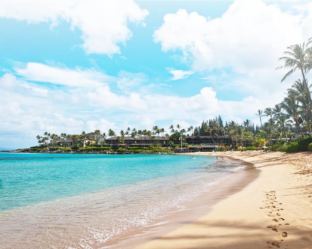 楽しみ方無限大のハワイへGO!