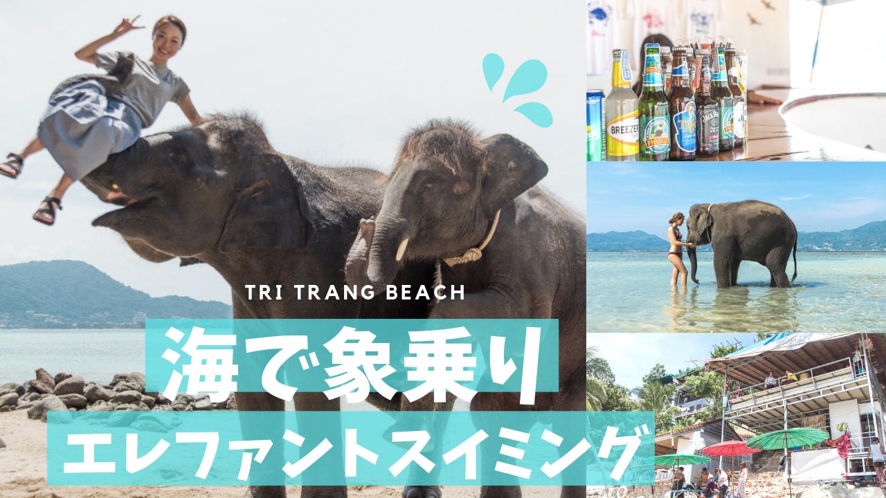 【プーケット最新観光】ビーチで象乗り&象遊びをしよう!トリトランビーチで象と写真を撮れるツアー体験記