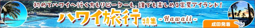 ハワイ旅行特集(成田発着)