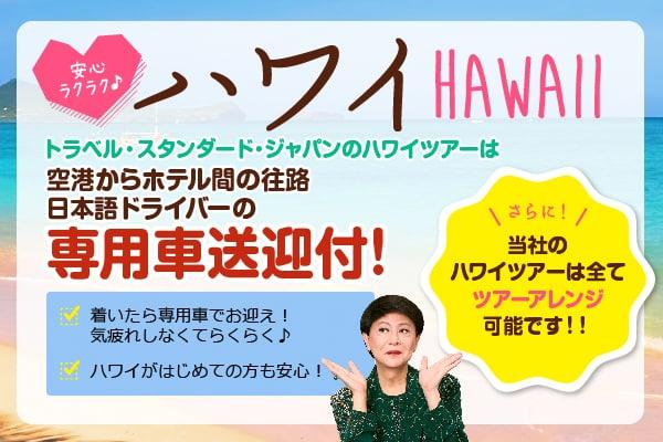 「日本語ドライバーの専用車送迎」付ハワイツアー