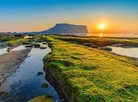 日本から一番近い海外の南国リゾート済州島(チェジュ島)