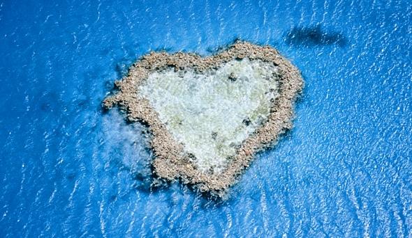 幸せの象徴と言われる珊瑚礁!「ハートリーフ」