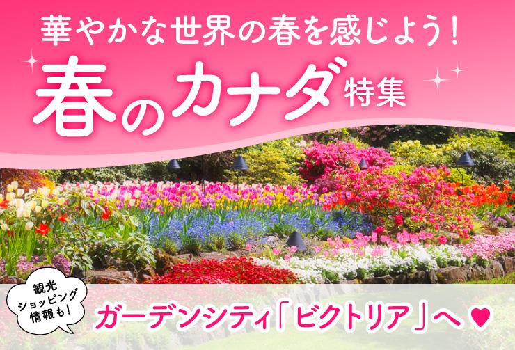 春のカナダ特集♥華やかな世界の春を感じよう!花が溢れるカナダのガーデンシティ「ビクトリア」へ行こう!