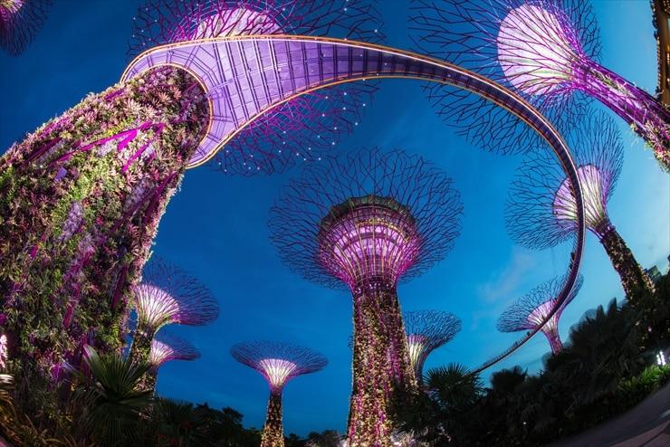 シンガポール/最先端の観光スポットが目白押し