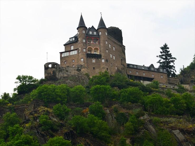 カッツ城(ネコ城)