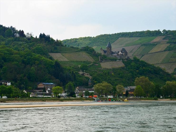 川沿いの小高い丘に連なる葡萄畑はワイン産地ならではの光景だ。