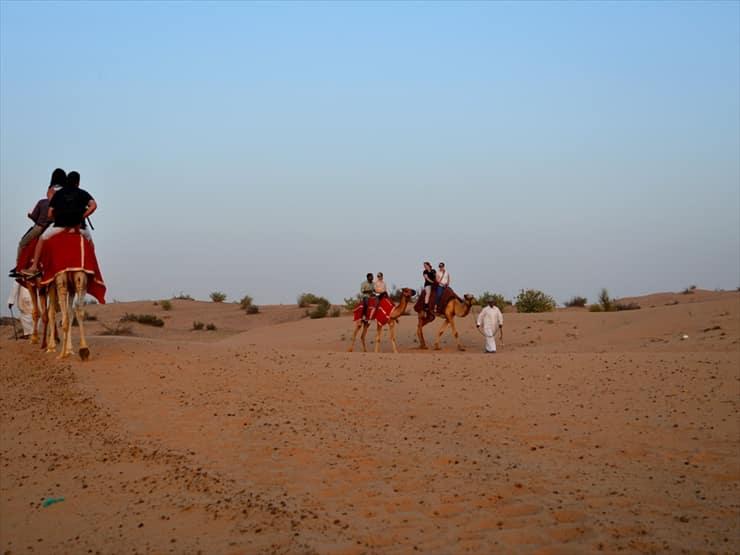 砂の中をゆっくりと闊歩するキャメルライド。