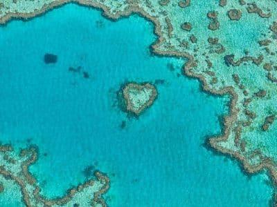 ハミルトン島・ハートリーフ(3×4)