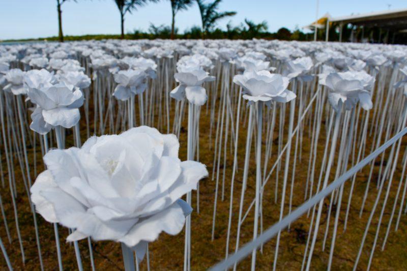 10,000 roses cafe cebu philippines
