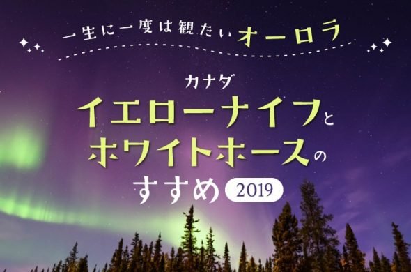 【カナダ】一生に一度は観たいオーロラ!イエローナイフとホワイトホースのすすめ201