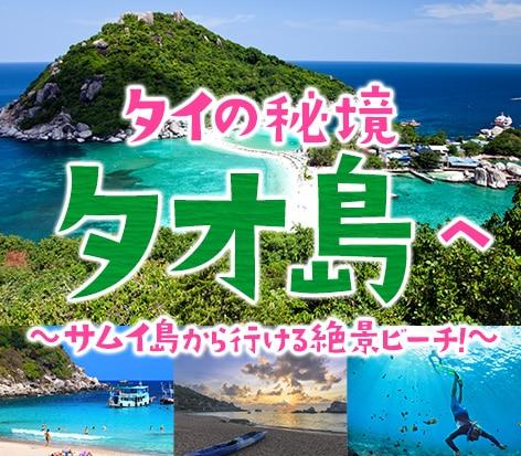 サムイ島から行けるタオ島ツアー