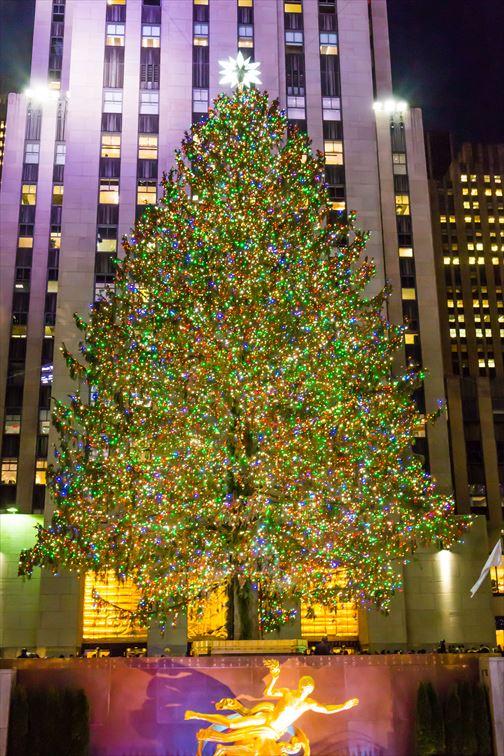 世界最大の大きさを誇るロックフェラーセンターのクリスマスツリー