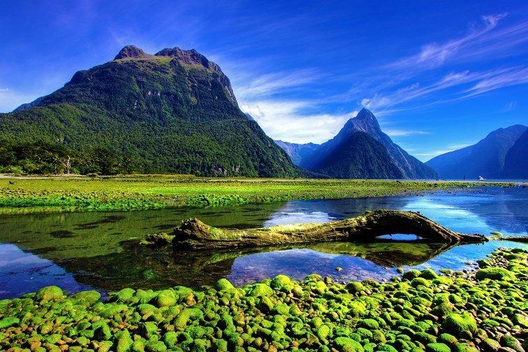 ニュージーランド・ミルフォードサウンド