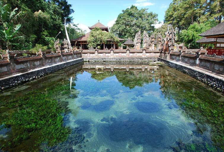 ティルタエンプル寺院の美しい湧き水