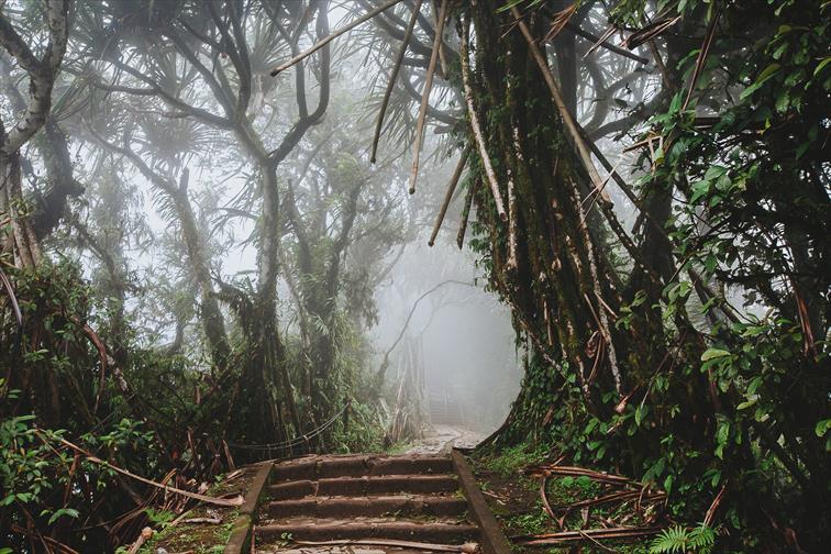 ランプヤン・ルフール寺院までの山歩きの参道