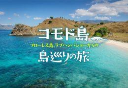 コモド島〜フローレス島、ラブハンバジョーからの島巡りの旅