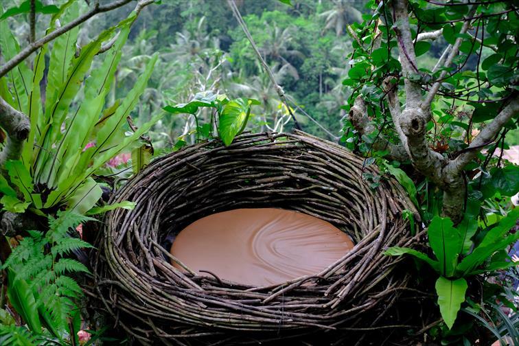 「バリ・スイング」鳥の巣のようなフォトスポットも人気