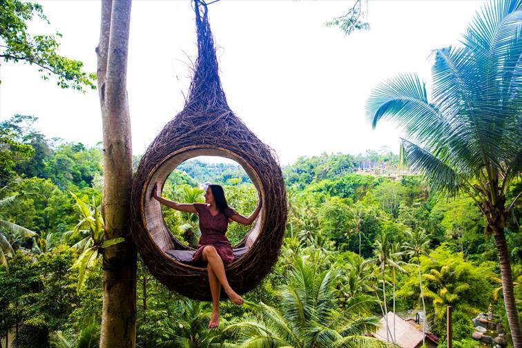椰子の木からつるされた鳥の巣のようなフォトスポット
