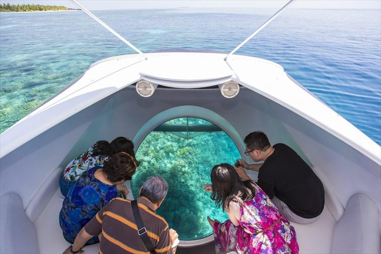 水に潜ることなく水中の様子を見ることができる「グラスボトムボート」