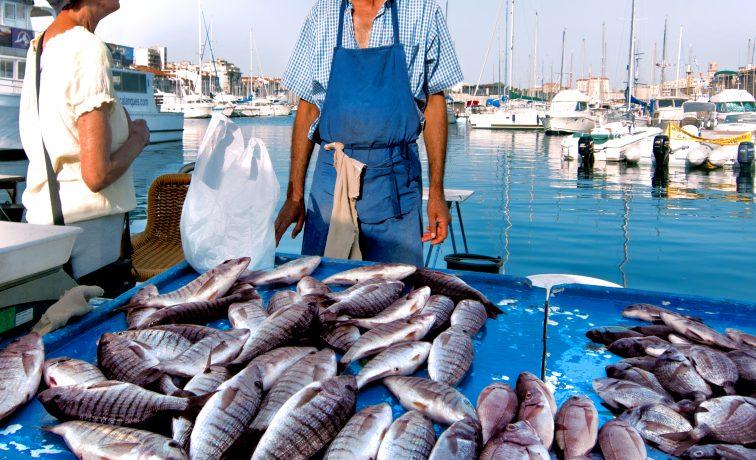 マルセイユ 魚市