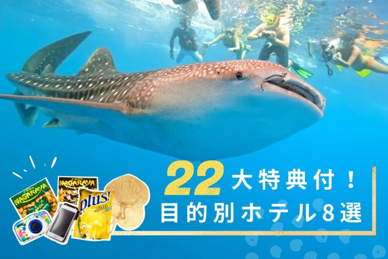 22cebu_activity