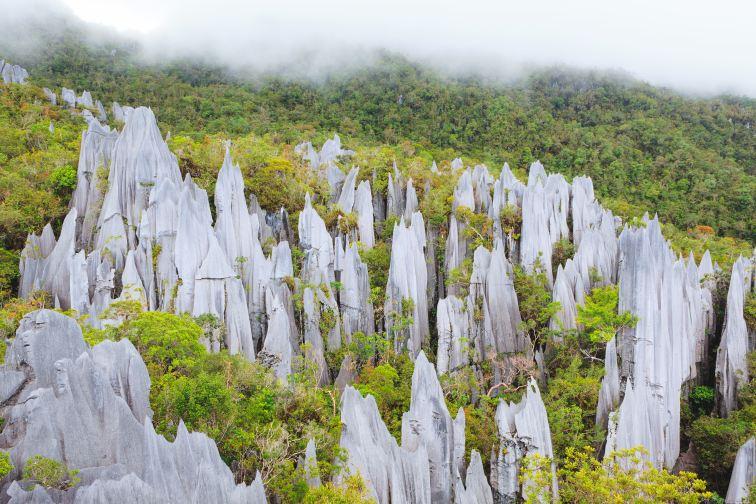 雄大で偉大な洞窟群「グヌン・ムル国立公園」