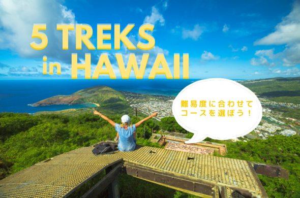 5 treks in hawaii トレッキング 記事 top