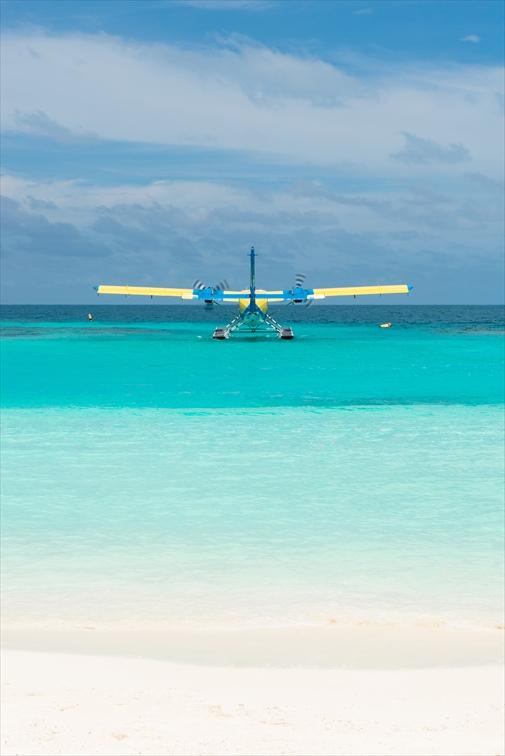フェリーか水上飛行機にてヘロン島へ