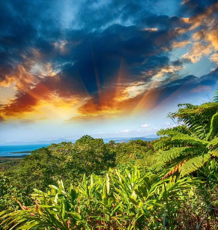 ヘロン島は南国の亜熱帯性気候