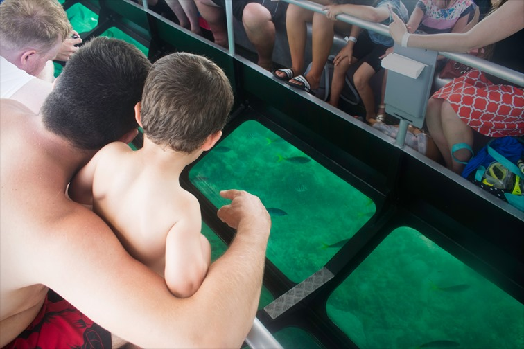 ファミリーにおすすめ「水中観光船」