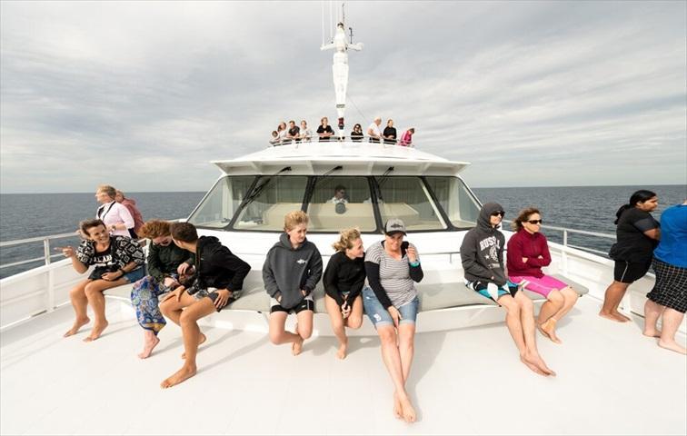レディ・マスグレイブ島まではクルーズ船を利用