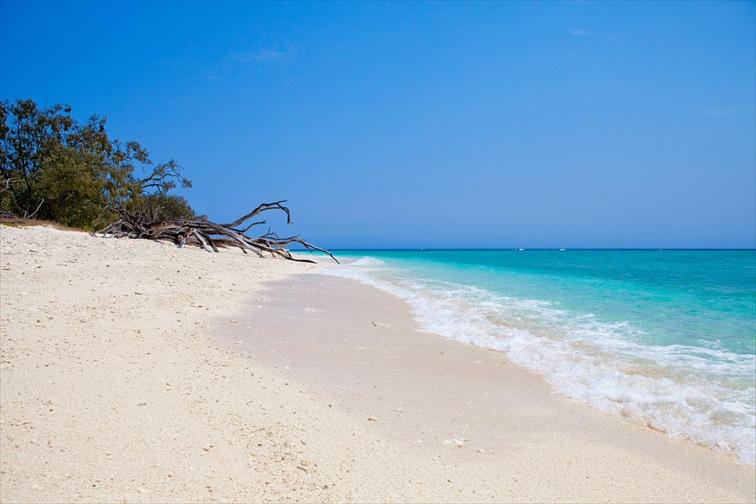 砂浜の白と海の青さのコントラストが美しい