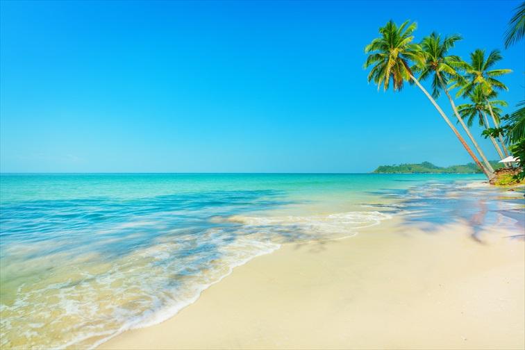 オルフェウス島は1年を通してマリンアクティビティが楽しめる