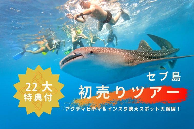 whale shark 2020