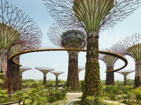シンガポール・ガーデンズバイザベイ